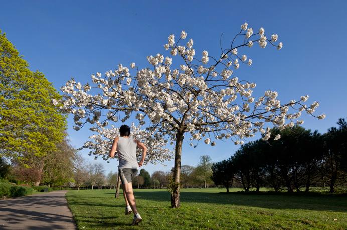running in local park
