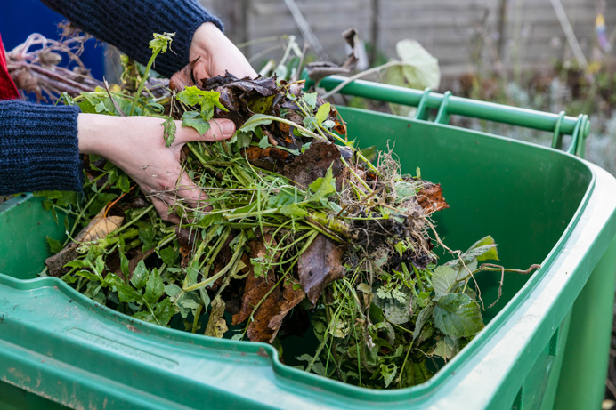 garden waste: your cuttings collected
