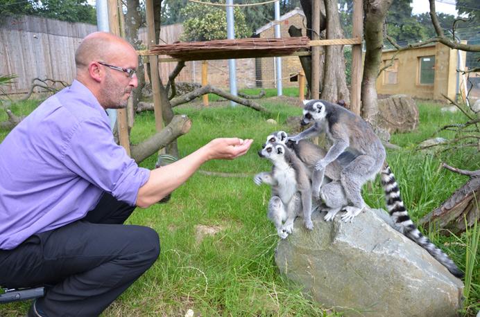 Hanwell Zoo manager Jim Gregory feeding the lemurs