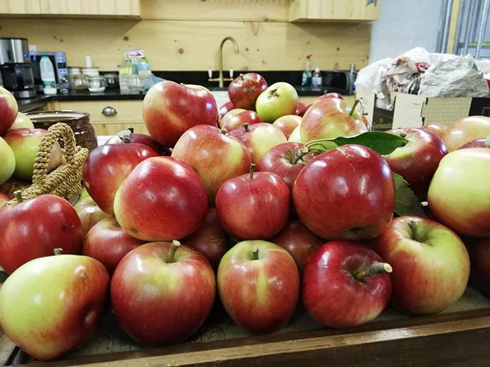 Horsenden Farm apples