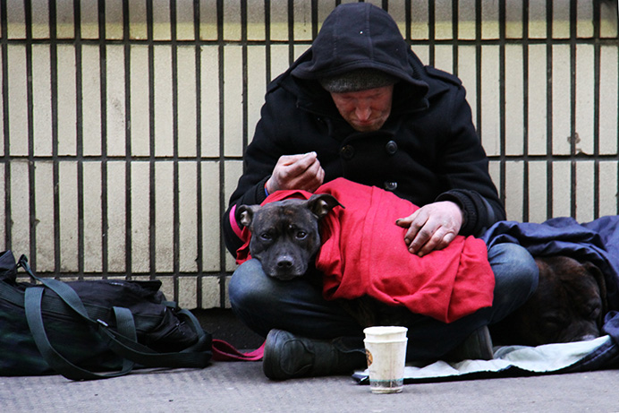 Homeless man and his dog in London. Photo by Nick Fewings (via Unsplash)