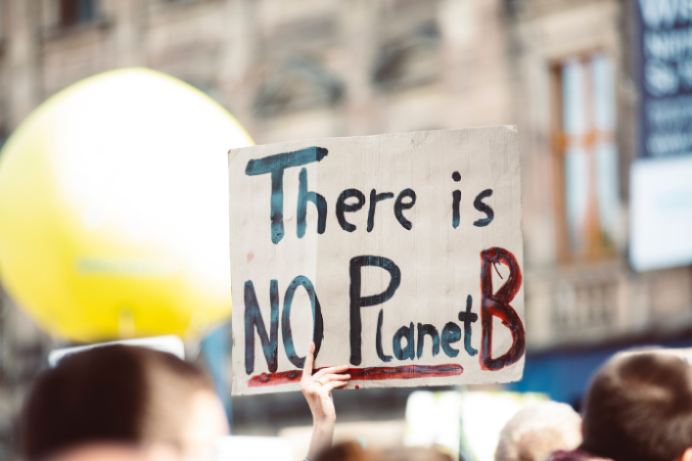 There is no planet B placard held in the air