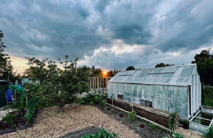 Greenhouse on an allotment