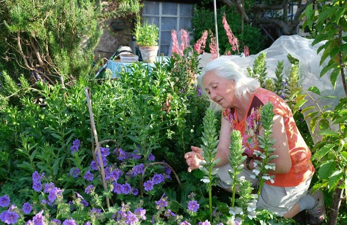 Vinka Reeves on the Haslemere Allotments. Photo copyright of Gill Shaw