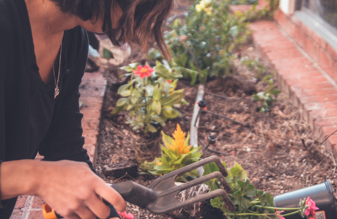 Female planting